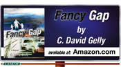 David Gelly Fancy Gap, the Novel